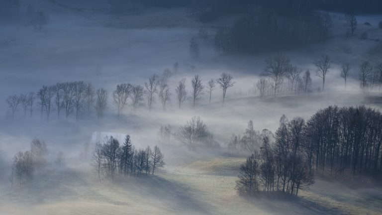 "Honorary mention - Marcin Grzegorczyn - ""Morning impressions"" (XVI edition, Discover Nature)"